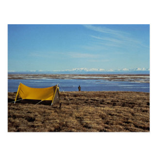 Llanos costeros que acampan tarjeta postal