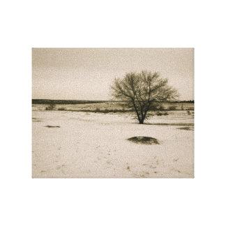 Llanos viejos del invierno de la moda impresión en lienzo