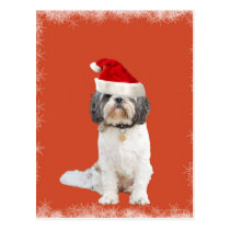 Llaso Apso with Hat Postcard