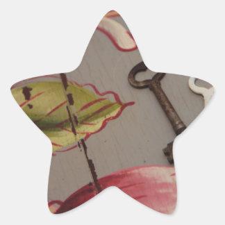 llave 012 JPG Calcomania Forma De Estrella Personalizada