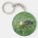 Llavero #2 de la tortuga de rotura