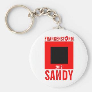 Llavero 5 del superviviente de Frankenstorm Sandy
