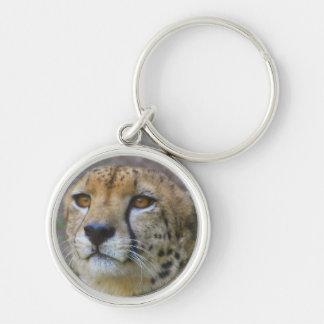 Llavero alerta del guepardo