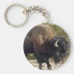Llavero americano del búfalo