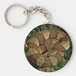 llavero amplio-congregado de la serpiente del copp