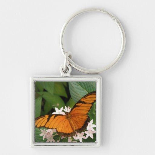 Llavero anaranjado de la mariposa de Julia
