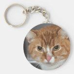 Llavero anaranjado del gato de Tabby de Shorthair