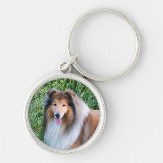 Llavero áspero del retrato del perro del collie, a