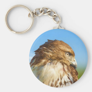 llavero Áspero-legged del halcón