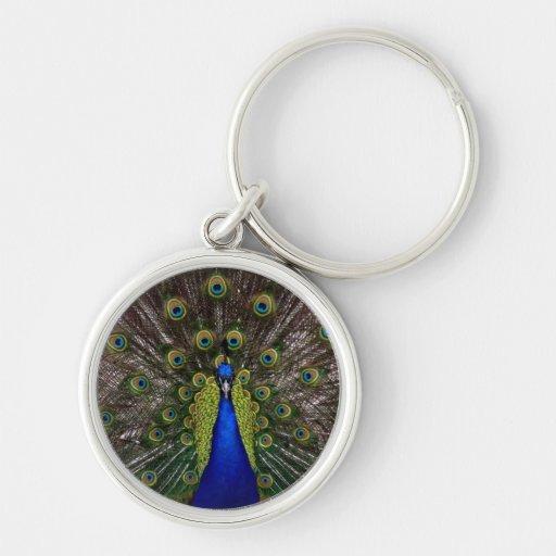 Llavero azul brillante del premio del pavo real