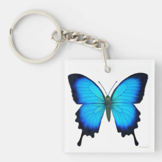 Llavero azul de la mariposa de Ulises