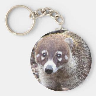 Llavero básico del botón del Coati
