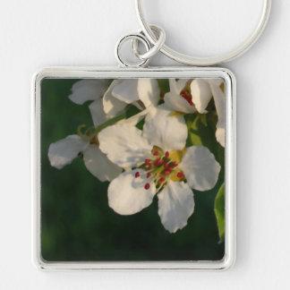 Llavero blanco de la primavera del flor de la pera
