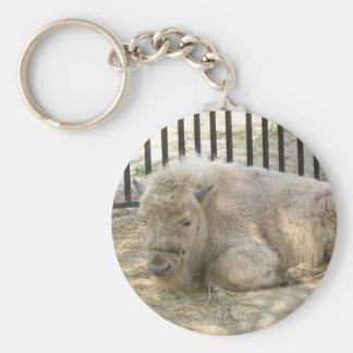 Llavero blanco del búfalo