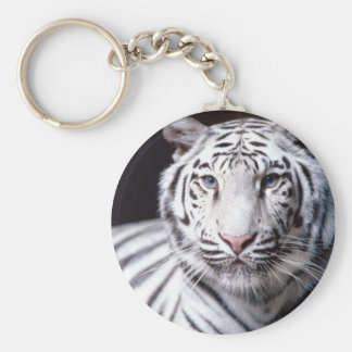 Llavero blanco del tigre de Bengala