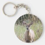 Llavero - ciervo - mis qué oídos grandes