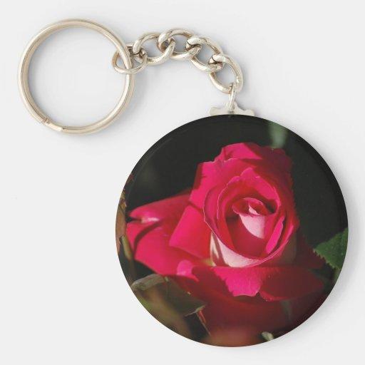 Llavero color de rosa magnífico rosado de la flor