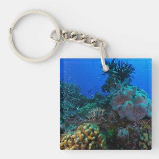 Llavero cuadrado del mar de coral