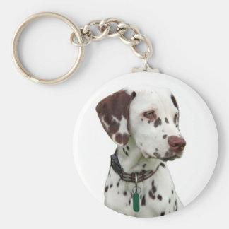 Llavero dálmata del perrito, idea del regalo