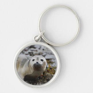 Llavero de cría de foca