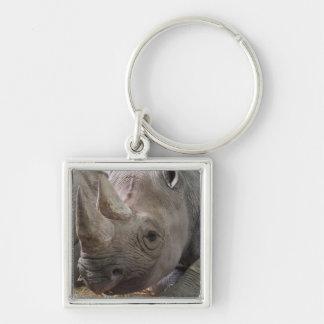 Llavero de cuernos del rinoceronte