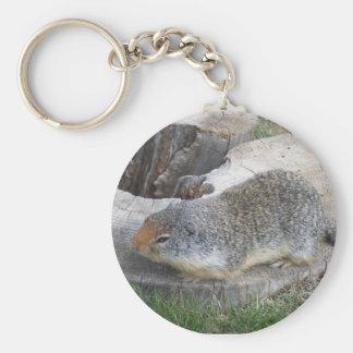 Llavero de Groundhog