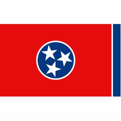 Llavero de la bandera de Tennessee cortado Llavero Fotográfico