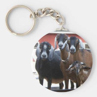 Llavero de la familia de la cabra