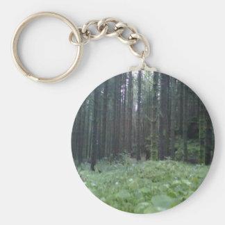 Llavero de la foto del bosque