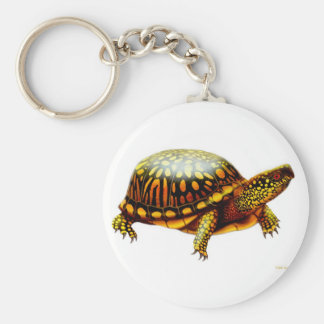 Llavero de la tortuga de caja