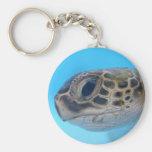 Llavero de la tortuga de mar verde