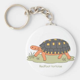 Llavero de la tortuga de Redfoot (el caminar)