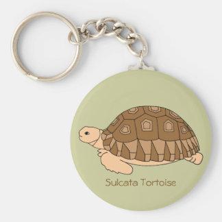 Llavero de la tortuga de Sulcata (verde)