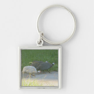 Llavero de las aves de Guinea