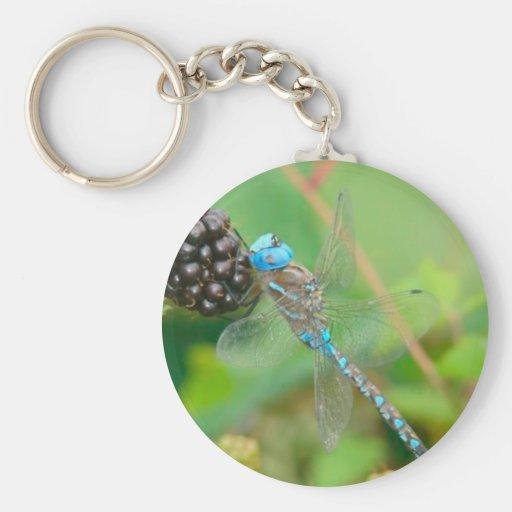 Llavero de las frambuesas de la libélula