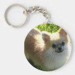 Llavero de los perritos de Pomeranian