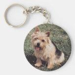 Llavero de Norwich Terrier