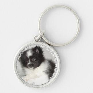 Llavero de Pomeranian del juguete