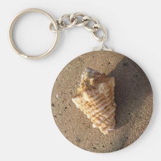 Llavero de Shell de la concha (color)