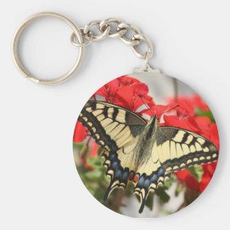 Llavero de Swallowtail del anís