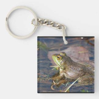 Llavero del acrílico de la rana