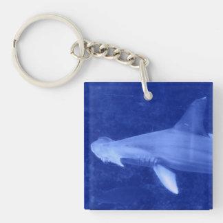 Llavero del acrílico del tiburón de Hammerhead