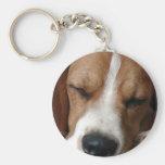 Llavero del beagle el dormir