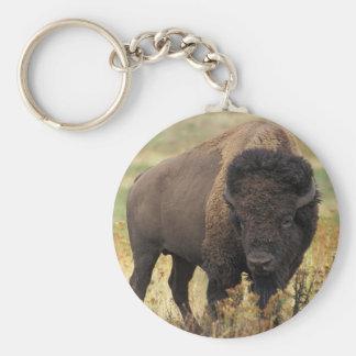 Llavero del bisonte americano