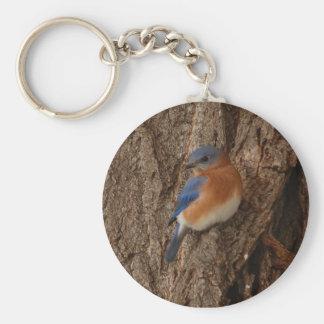 Llavero del Bluebird