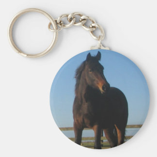 Llavero del caballo de bahía