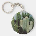 Llavero del cactus