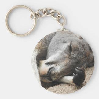 Llavero del canguro el dormir