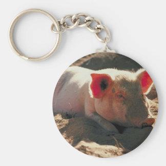 Llavero del cerdo de Sandy