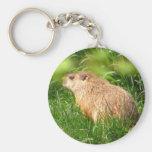 Llavero del ~ de la marmota